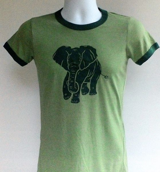 Men's Green Ringer Tee