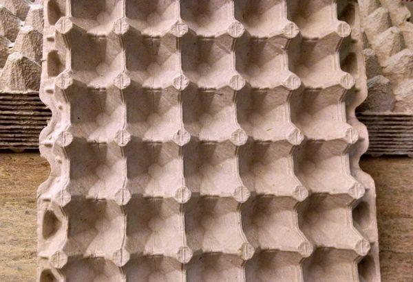 Egg Carton Flats
