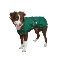 Extreme Winter Dog Coat with Tummy Panel