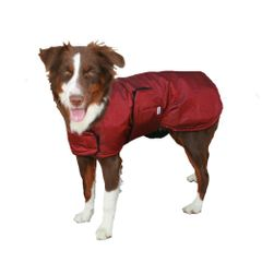 Extreme Winter Dog Coat