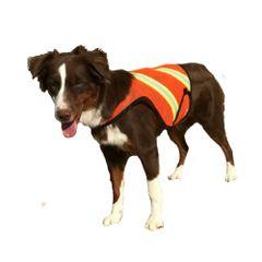 Dog High Visibility Mesh Vest