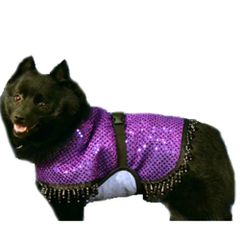 Fashion Dog Cool Coat with tummy panel and beaded border