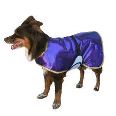 Fashion Dog Cool Coat with tummy panel
