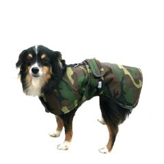 Winter Dog Coat with Tummy Panel