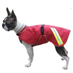 Winter Dog Coat with Tummy Panel and Reflective Strips
