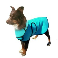Dog Cool Coat with matching cool collar