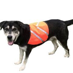 Dog High Visibility Ultra Vest