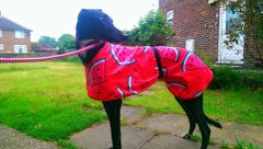 Towelling Coat - Dual purpose cooling or drying Hydro