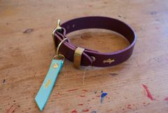 Fig luxury leather dog collar