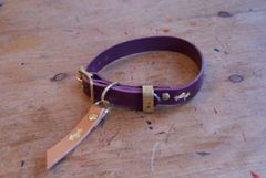 Fig luxury leather dog collar and lead set