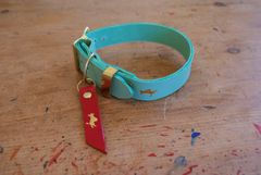 Mint luxury leather dog collar and lead set