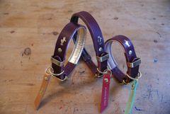 Fig padded luxury leather dog collar