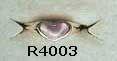 R4003