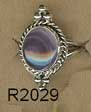R2029