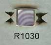 R1030 10-13