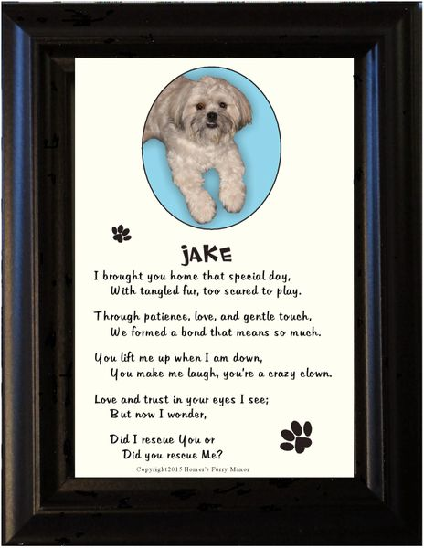 Adopted Pet Poem and Picture in Frame | Homer\'s Furry Manor