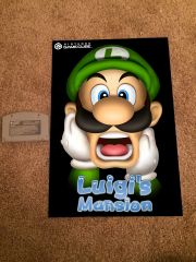 Luigi's Mansion Poster (18x12 in)