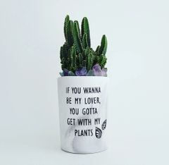 Cement Planter - If You Wanna Be My Lover, You Gotta Get With My Plants