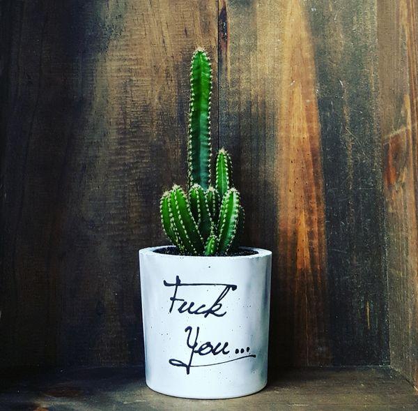 Cement Planter - Fuck You...