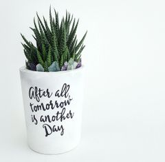 Cement Planter - After All Tomorrow Is Another Day