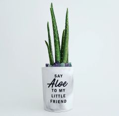 Cement Planter - Say Hello To My Little Friend