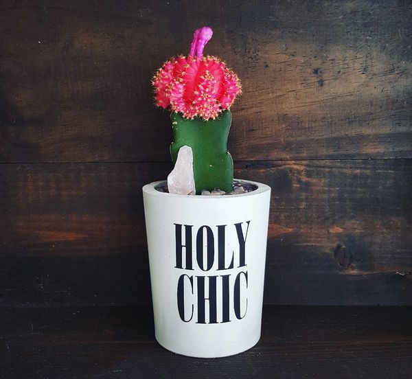 Cement Planter - Holy Chic