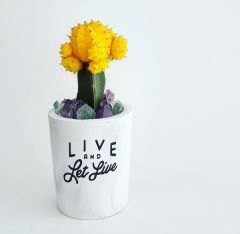 Cement Planter - Live & Let Live