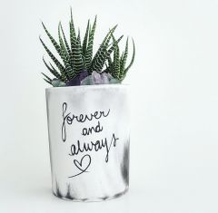 Cement Planter - Forever & Always