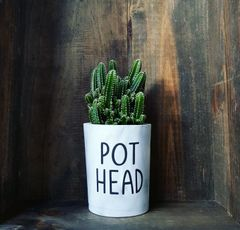Cement Planter - Pot Head