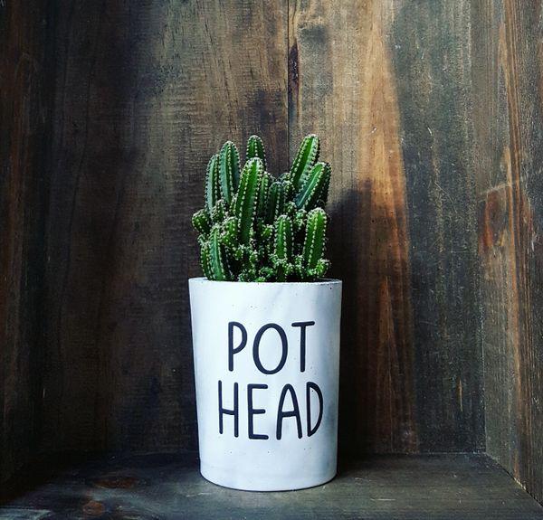 Cement Planter - Pot Head