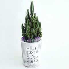 Cement Planter - High Tides + Good Vibes