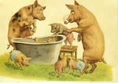 £1 Card!!! 'Bath Time' Vintage Pig Greeting Card Repro.