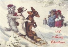 Fun Vintage Christmas Card of Dogs on a Sledge