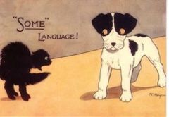 Some Language! Vintage Illustration Greeting Card of a Dog and Cat.