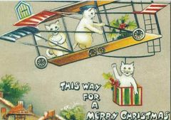 Cats on a Plane! Vintage Cat Illustration Christmas Card. Great Offbeat Design.