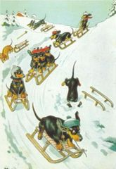 Dachshund Through The Snow!! Vintage Christmas Card Repro