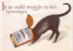 An Awful Struggle. Vintage Cat Greeting Card.