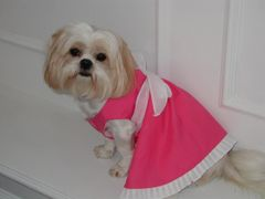 Dog Dresses: Handmade IN THE HOT PINK Cotton Dog Dress by Alexis Creations USA