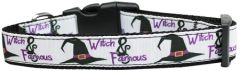 Holiday Nylon Dog Collars: Nylon Ribbon Collar by Mirage Pet Products - WITCH AND FAMOUS