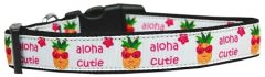 Dog Collars: Nylon Ribbon Collar by Mirage Pet Products USA - ALOHA CUTIE