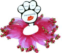 Smoochers Dog Collars: Smoocher Dog Collar Mirage Pet Products - PINK ROSES