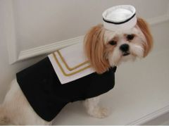 Dog Coats: Alexis Creations Saturday Yachting Coat and Hat Set Unisex