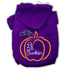 Dog Hoodies: LIL PUNKIN Screen Print Dog Hoodie in Various Colors & Sizes by MiragePetProducts
