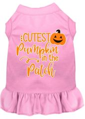 DOG DRESSES: Screen Print Dress CUTEST PUMPKIN IN THE PATCH Poly/Cotton with ruffle trim Various sizes & Colors Made in USA by MiragePetProducts