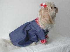 Dog Dresses: Handmade DOWN ON THE FARM Denim Dog Dress By Alexis Creations USA