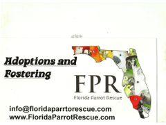Florida Parrot Rescue