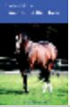 """Laminitis in the Horse"" Book by David Ramey, DVM $10.99"