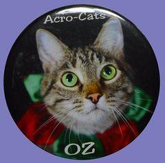 """Oz """"The Clown"""" Button/Magnet"""