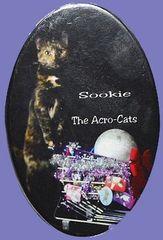 "Sookie ""The Airhead"" Button/Magnet"