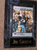 Joe Greene Sports Plaque